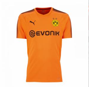Camiseta Portero nueva Borussia Dortmund 2017/2018